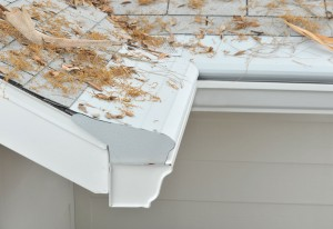 Gutter Guards Eden Prairie MN