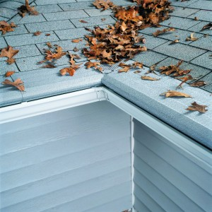 Gutter Guards Clive MN